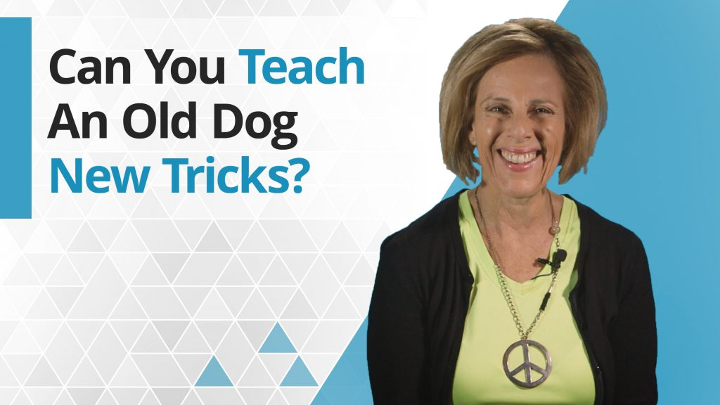 Title graphic - Can you teach an old dog new tricks